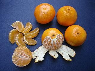 Clementine Orange Fruit