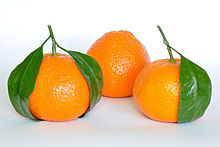 Mandarin Orange Fruit